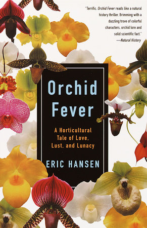 Orchid Fever by