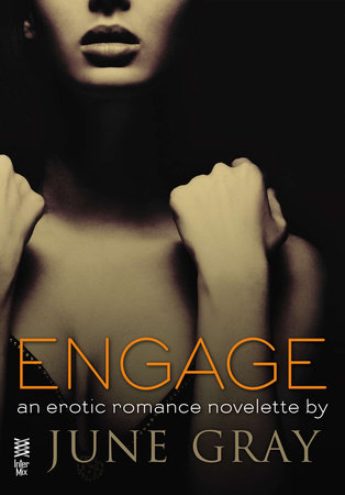 Engage (Disarm #5)