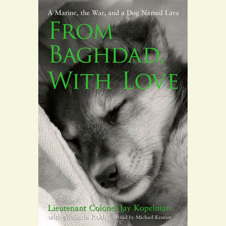 From Baghdad with Love by Melinda Roth and Jay Kopelman