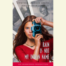 Rain is Not My Indian Name Cover