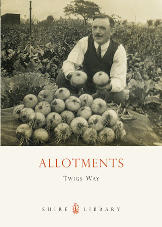 Allotments by Twigs Way