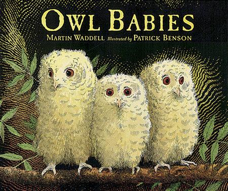 Owl Babies Big Book