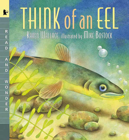 Think of an Eel by