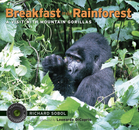Breakfast in the Rainforest by Richard Sobol