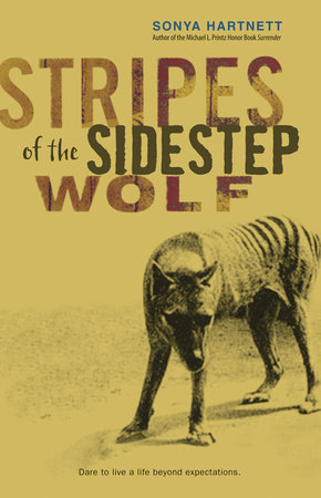Stripes of the Sidestep Wolf by