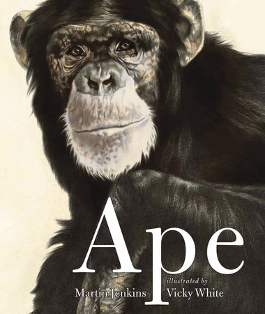 Ape by