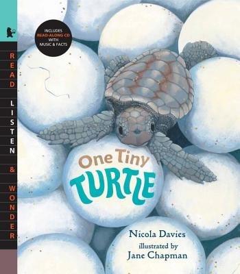 One Tiny Turtle with Audio