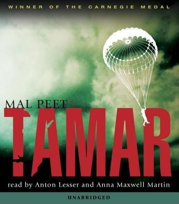 Tamar Audio by