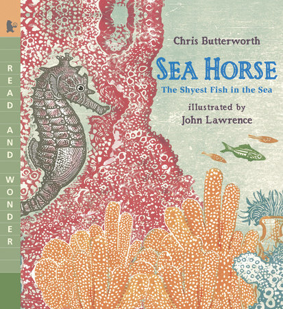 Sea Horse by