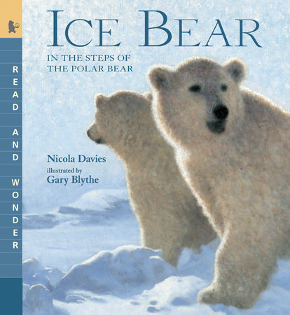 Ice Bear by Nicola Davies