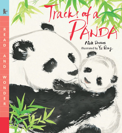 Tracks of a Panda by Nick Dowson