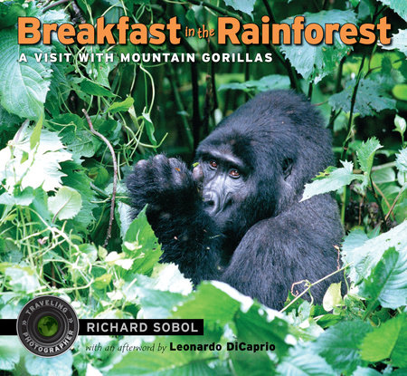 Breakfast in the Rainforest by