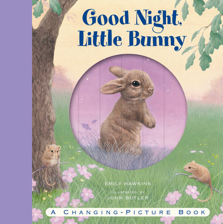 Good Night, Little Bunny by