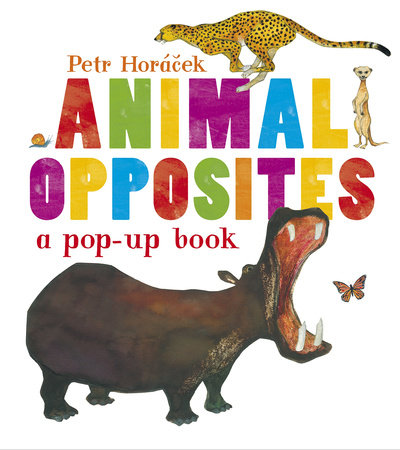 Animal Opposites by Petr Horacek
