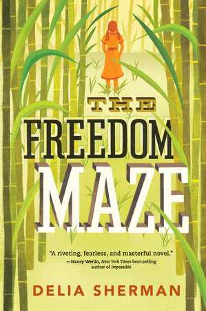The Freedom Maze by