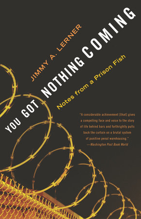 You Got Nothing Coming by Jimmy A. Lerner