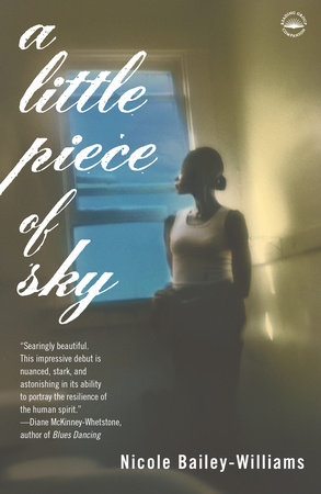 A Little Piece of Sky by Nicole Bailey Williams