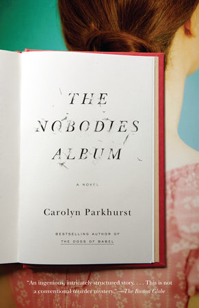 The Nobodies Album book cover