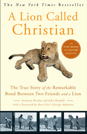 A Lion Called Christian by John Rendall and Anthony Bourke