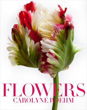 Flowers by Carolyne Roehm