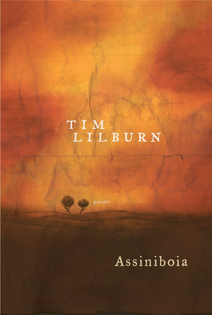 Assiniboia by Tim Lilburn