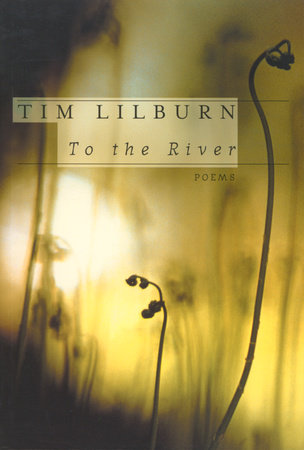 To the River by Tim Lilburn