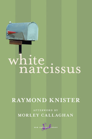 White Narcissus by