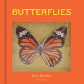 Butterflies Written by David Hawcock