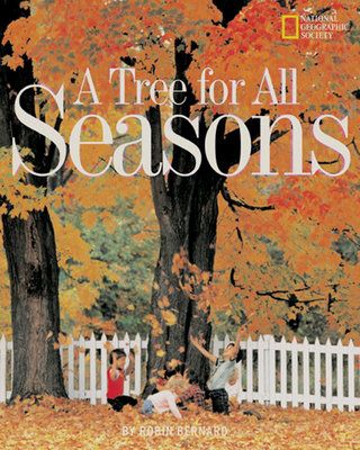 Tree For All Seasons by Bernard