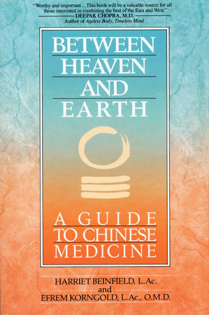 Between Heaven and Earth by Efrem Korn and Harriet Beinfield