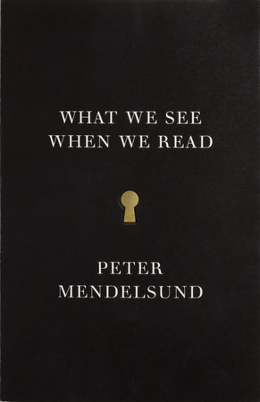 What We See When We Read by