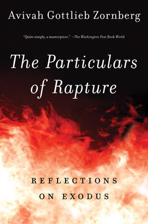 The Particulars of Rapture by