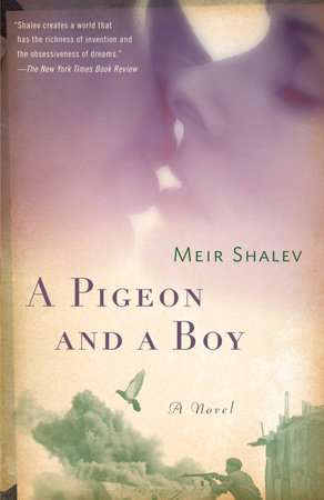 A Pigeon and a Boy by