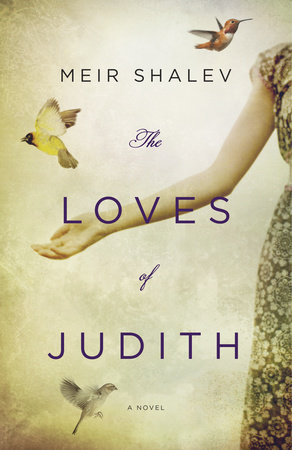 The Loves of Judith by Meir Shalev