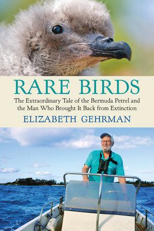 Rare Birds by