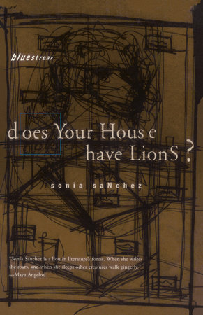 Does Your House Have Lions? by