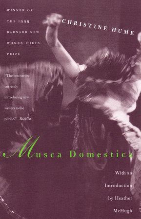 Musca Domestica by