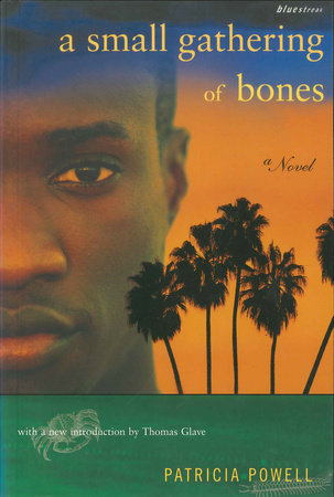 A Small Gathering of Bones by