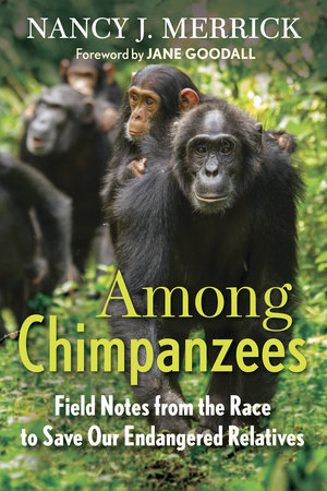 Among Chimpanzees by