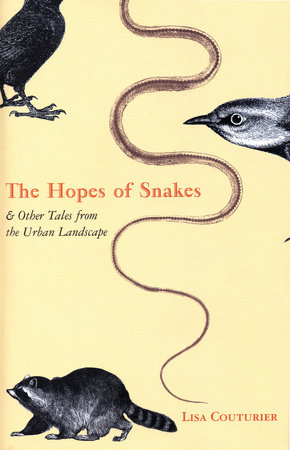 The Hopes of Snakes by Lisa Couturier