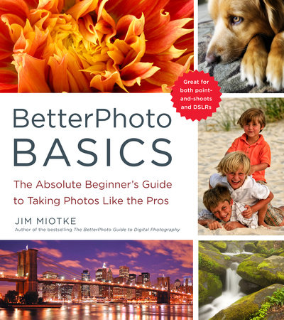 BetterPhoto Basics by