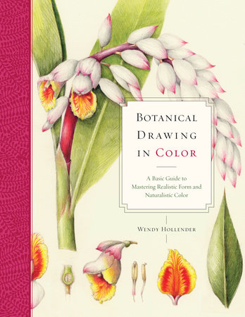 Botanical Drawing in Color by