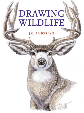 Drawing Wildlife by