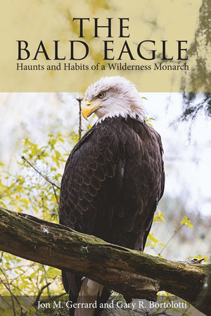 The Bald Eagle by