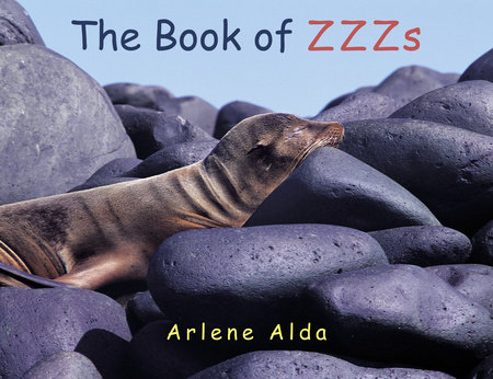 The Book of ZZZs by