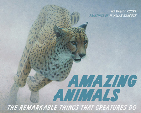Amazing Animals by