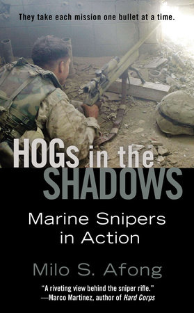 Hogs in the Shadows