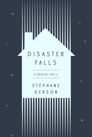 Disaster Falls book cover