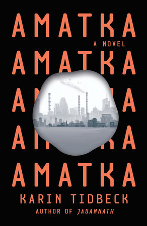Cover of Amatka