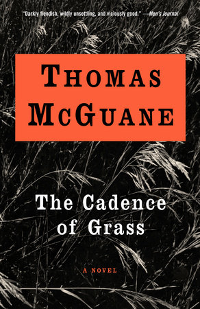 The Cadence of Grass by